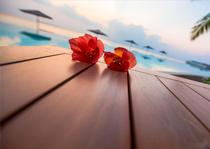 amilla-fushi-booking-prices